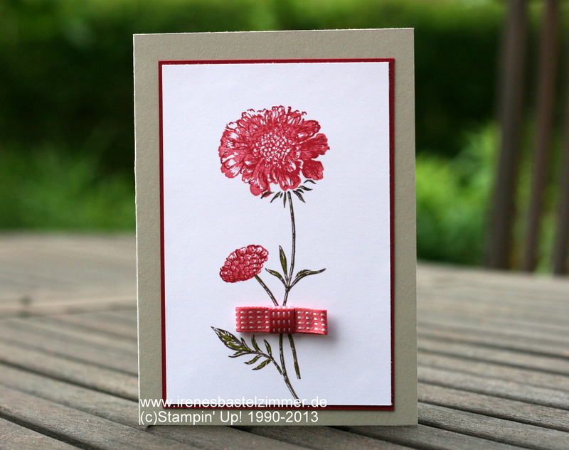 Stampin-Up-Field-Flowers-waldhimbeere-morgenrot-saharasand