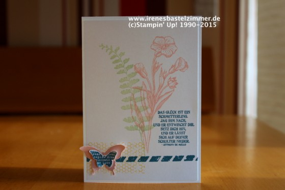 Stampin' Up!-Schmetterlingsgruß-Eleganter Schmetterling