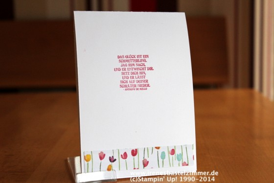 Stampin' Up!-Thinlits Formen Schmetterlinge- Zarter Frühling