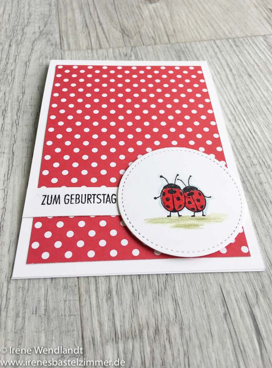 Love_you_lots-stampin_up-Geburtstagskarte-marienkäfer-rot_weoß-3